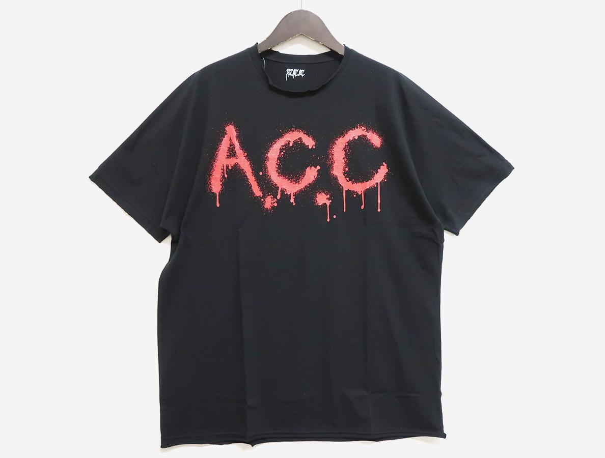 AC18SS-TS01