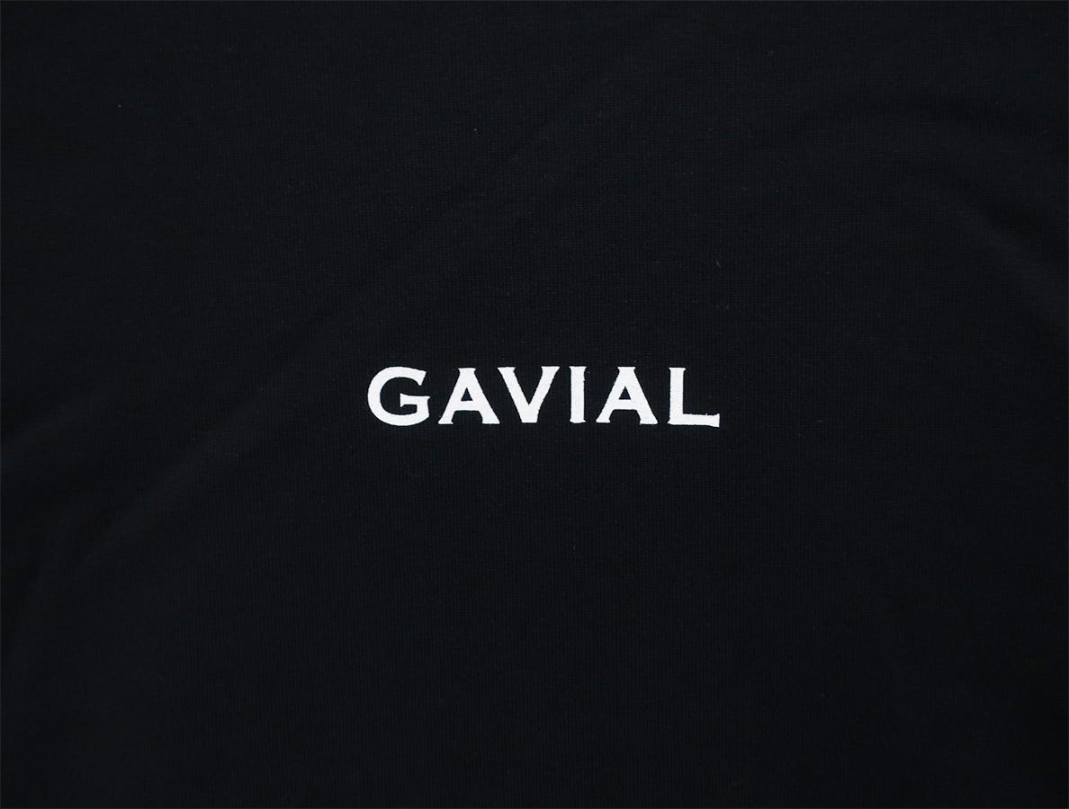GVL-19SST-0347